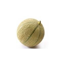 Dirafrost / Purée melon ( 4Kg )