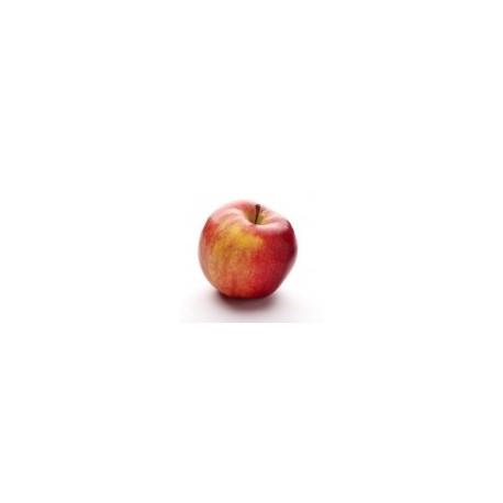 Dirafrost / Purée pomme ( 4Kg )