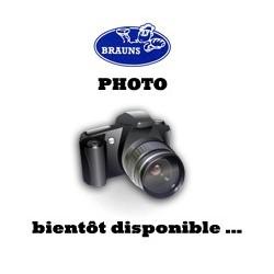 Boiron / Brisure framboise ( 10 Kg )