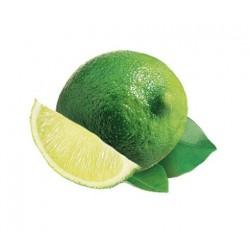 Boiron / Purée citron vert( 6Kg )