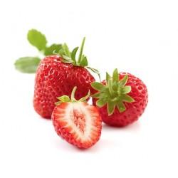 Purée fraise ( 6Kg )