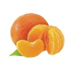 Purée mandarine ( 6Kg )