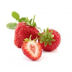 Boiron / Coulis fraise 12 x 500Gr